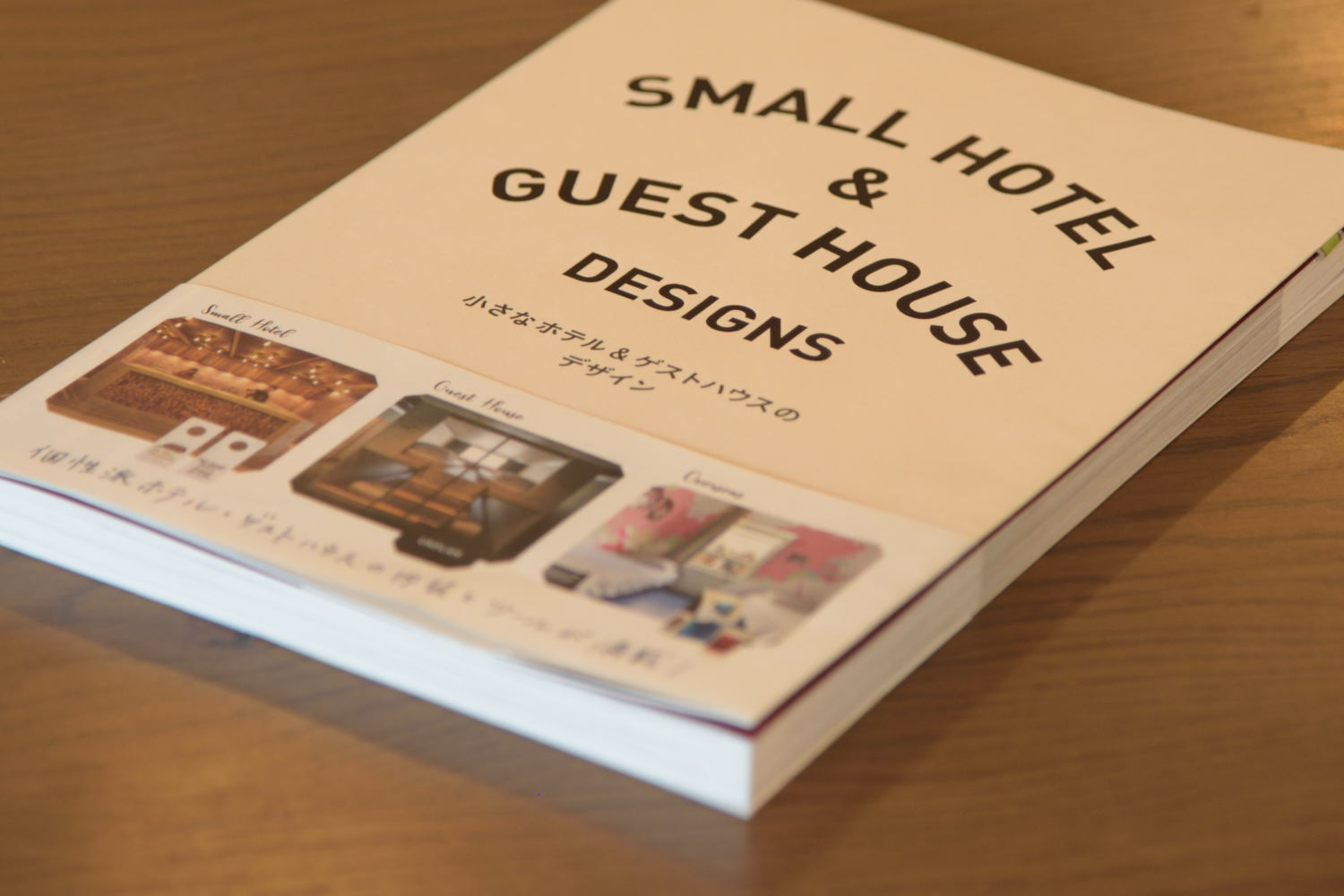 smallguesthouse 2 - View Small Hotel And Guest House Design Pics
